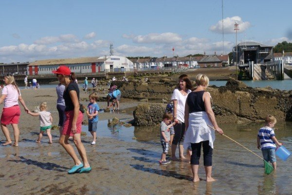 Rock pooling with FoSB
